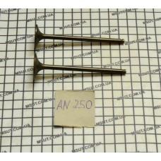 Клапана впуск+выпуск AN250 SUZUKI BURGMAN (94,5-5-25*95-5-28)